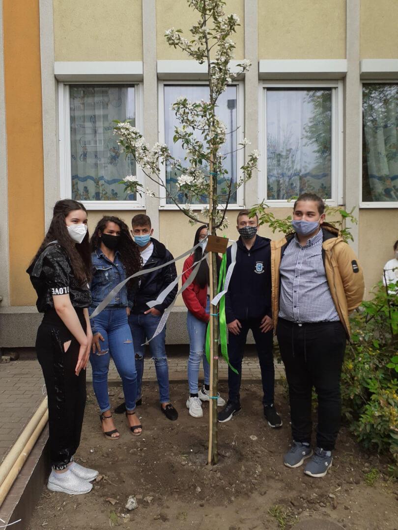 Ültess egy fát az elmúlás ellen!
